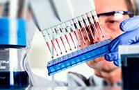 XXIV Simpósio Internacional de Hemoterapia e Terapia Celular